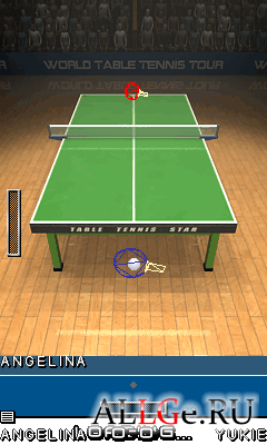 Table Tennis Star